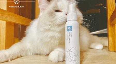 養貓新手貓指南│貓砂除臭!貓砂很臭怎麼辦?四項你該注意的細節…